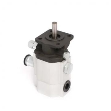 KAWASAKI 07443-66503 HD Series Pump
